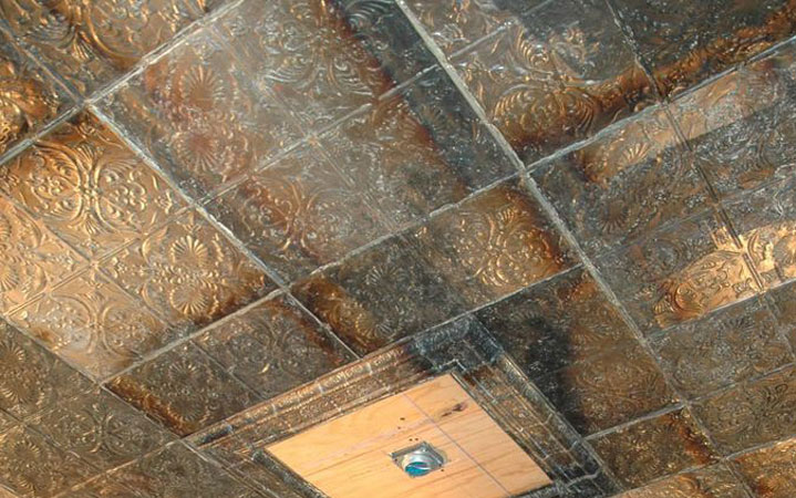 animex-creations-ceiling-tiles-5