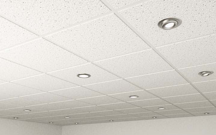 animex-creations-ceiling-tiles-6